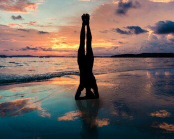 Yoga Stand In Hands Silhouette  - DanaTentis / Pixabay